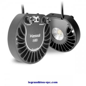 LED Tuna Flora H80 Kessil
