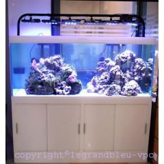 Aquarium eau de mer blanc mat
