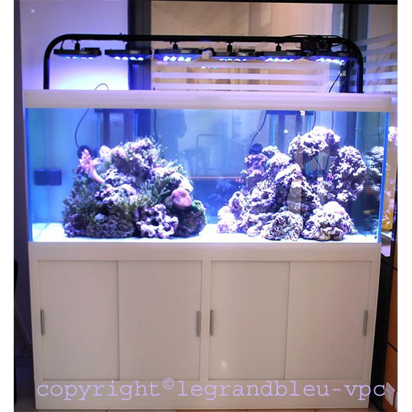 Aquarium eau de mer blanc mat le grand bleu for Achat aquarium eau de mer