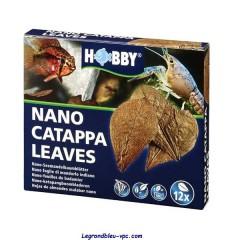 NANO CATAPPA LEAVES Hobby