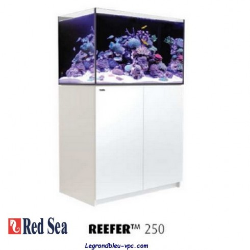 RED SEA REEFER 250 - BLANC