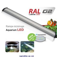 RAMPE LED LUMIVIE RAL G2 - 120cm 40w - Blanc/Bleu leds 20000° K