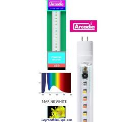 T5 LED MARINE WHITE PRO 59cm 8 watts ARCADIA